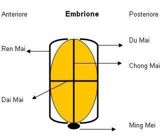 embrionemingmen